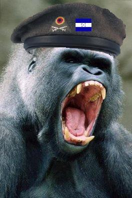 magilla_gorilla